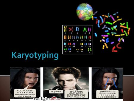 Karyotyping.