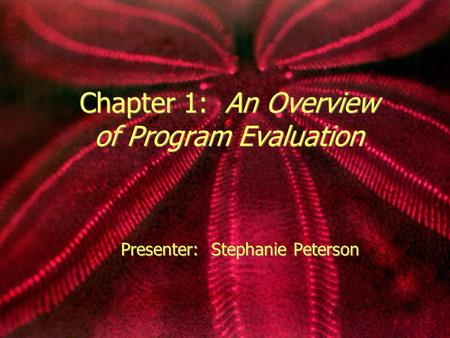 Chapter 1: An Overview of Program Evaluation Presenter: Stephanie Peterson.