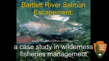 Bartlett River Salmon Escapement: a case study in wilderness fisheries management Glacier Bay National Park and Preserve.