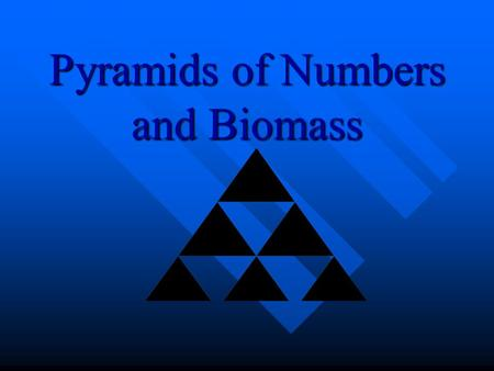 Pyramids of Numbers and Biomass Pyramids Of Numbers A pyramid of number is a diagram showing the amount of energy lost at each level when an organism.
