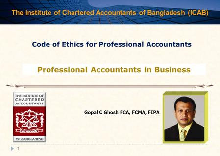 Professional Accountants in Business