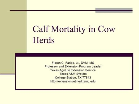 Calf Mortality in Cow Herds Floron C. Faries, Jr., DVM, MS Professor and Extension Program Leader Texas AgriLife Extension Service Texas A&M System College.