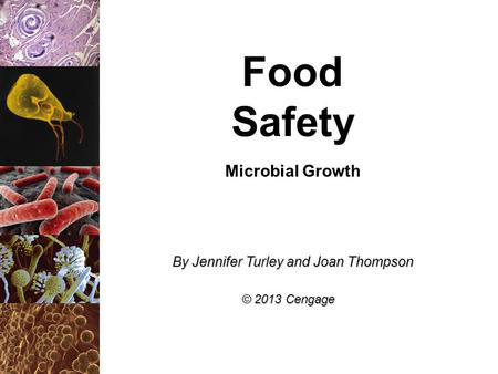 Food Safety Microbial Growth By Jennifer Turley and Joan Thompson © 2013 Cengage.