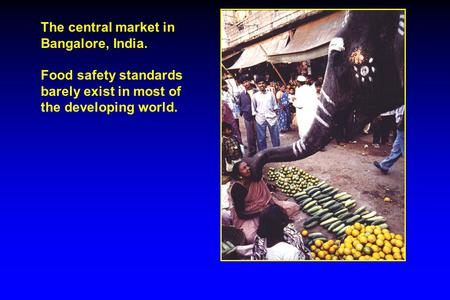 The central market in Bangalore, India. Food safety standards barely exist in most of the developing world.