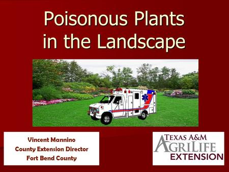 Poisonous Plants in the Landscape Vincent Mannino County Extension Director Fort Bend County.