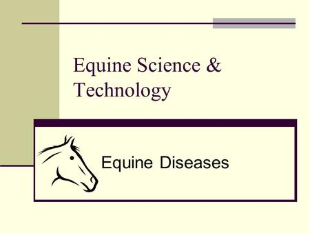 Equine Science & Technology Equine Diseases. Anthrax (Splenic Fever) Anthrax- an acute infectious disease affecting horses and other warm-blooded animals.