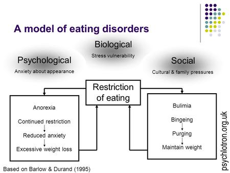 Biological <strong>Stress</strong> vulnerability A model of eating disorders Restriction of eating Social Cultural & family pressures Psychological Anxiety about appearance.