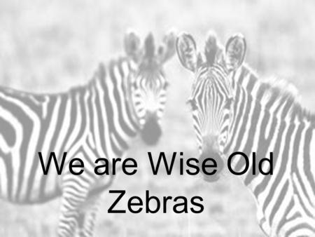 We are Wise Old Zebras We are (put on glasses) wise old zebras. We've got wise old zebra (run hands head to knees) stripes. You should (tilt head,