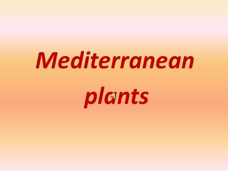 Mediterranean plants. The plants, which are mainly cultivated since ancient times until today in Greece and many other Mediterranean countries, are.