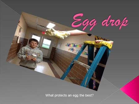 What protects an egg the best?. The reason I am doing this project is to see what protects an egg from breaking and cracking a cup, bubble wrap, stuffed.