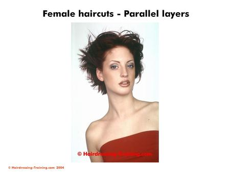 © Hairdressing-Training.com 2004 Female haircuts - Parallel layers.