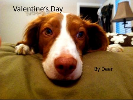 By Deer Valentine's Day. Agenda: Eat. (Play videos during). Share best/worst. Also- something/someone you love. No quiz. (It's a holiday!) PPT surprise.
