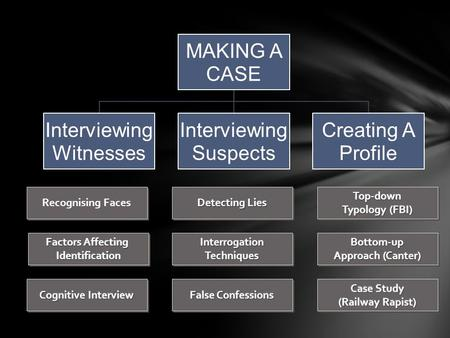 MAKING A CASE Interviewing Witnesses Suspects Creating A Profile