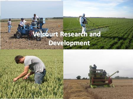 Velcourt Research and Development. Aim of the Department To provide totally independent advice to the farm management team and agronomy service clients.