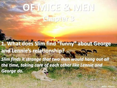 "OF MICE & MEN Chapter 3 1. What does Slim find ""funny"" about George and Lennie's relationship? Slim finds it strange that two men would hang out all."
