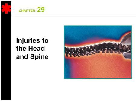 CHAPTER 29 Injuries to the Head and Spine. Anatomy Review.