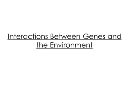 Interactions Between Genes and the Environment. Genes are not the only thing that can affect the appearance of an organism, environment can play a large.