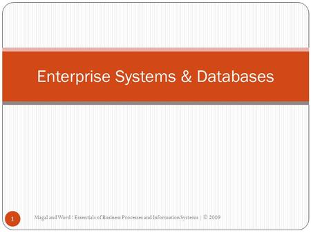Magal and Word ! Essentials of Business Processes and Information Systems | © 2009 1 Enterprise Systems & Databases.