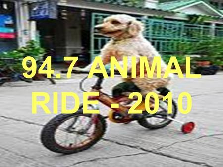 94.7 ANIMAL RIDE - 2010. 94.7 ANIMAL RIDE Bring your bike and come and join us for a 94.7 Animal Ride on 21 November 2010. What's it about? We are riding.