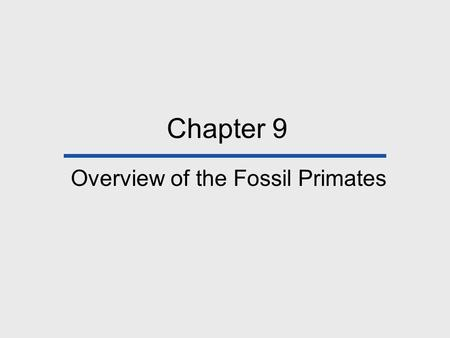 Chapter 9 Overview of the Fossil Primates. Chapter Outline Introduction Primate Origins Paleocene Primate-like Mammals Eocene Primates Oligocene Primates.