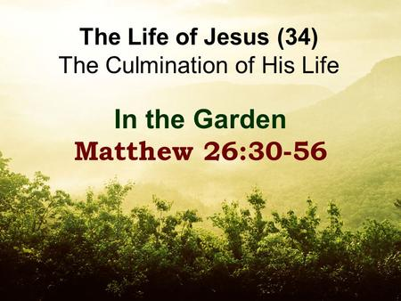The Life of Jesus (34) The Culmination of His Life In the Garden Matthew 26:30-56.