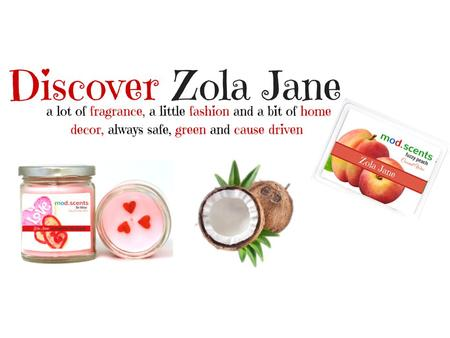 ZolaJane (Becky's Mom)(Paul's Mom) Introduction to Zola Jane Why Change? Why Zola Jane? What is Zola Jane? Different Ways to Sell and Build a Business.