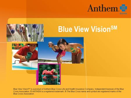 Blue View Vision SM Blue View Vision SM is a product of Anthem Blue Cross Life and Health Insurance Company. Independent licensee of the Blue Cross Association.