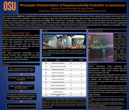 Phenotypic Characterization of Exopolysaccharide Production in Lactococcus Roberto A. Garcia III  Mentor: Dr. Janine Trempy Oregon State University; Department.