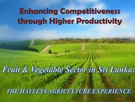 Enhancing Competitiveness through Higher Productivity.