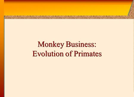 © 2002 by The McGraw-Hill Companies, Inc. All rights reserved. McGraw-Hill Monkey Business: Evolution of Primates.