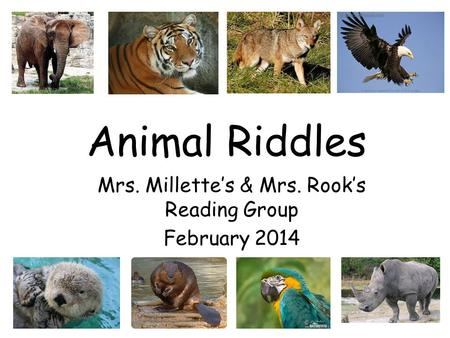 Mrs. Millette's & Mrs. Rook's Reading Group February 2014