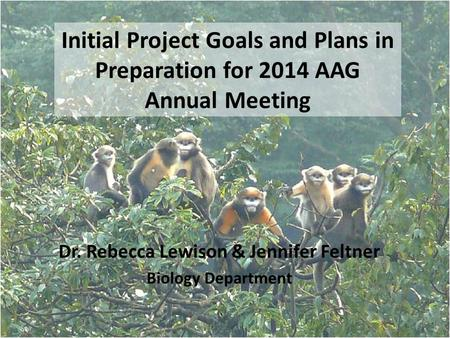 Initial Project Goals and Plans in Preparation for 2014 AAG Annual Meeting Dr. Rebecca Lewison & Jennifer Feltner Biology Department.
