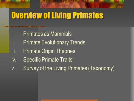 Overview of Living Primates I. Primates as Mammals II. Primate Evolutionary Trends III. Primate Origin Theories IV. Specific Primate Traits V. Survey of.
