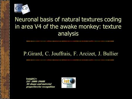 Neuronal basis of natural textures coding in area V4 of the awake monkey: texture analysis P.Girard, C. Jouffrais, F. Arcizet, J. Bullier Insight2+ IST–2000-29688.