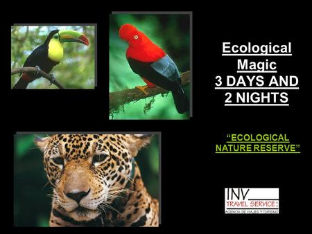 "Ecological Magic 3 DAYS AND 2 NIGHTS ""ECOLOGICAL NATURE RESERVE"""