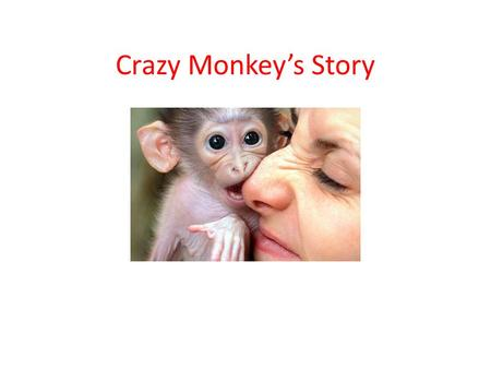 Crazy Monkey's Story. First Day in Office Before pay hike.