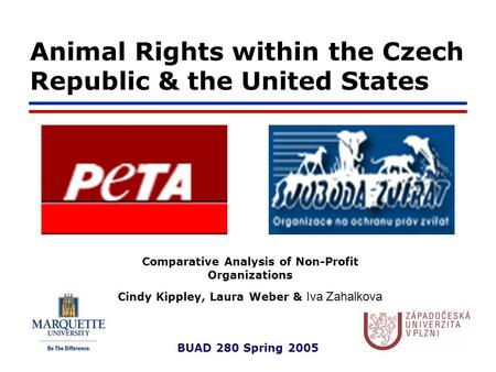 BUAD 280 Spring 2005 Animal Rights within the Czech Republic & the United States Comparative Analysis of Non-Profit Organizations Cindy Kippley, Laura.