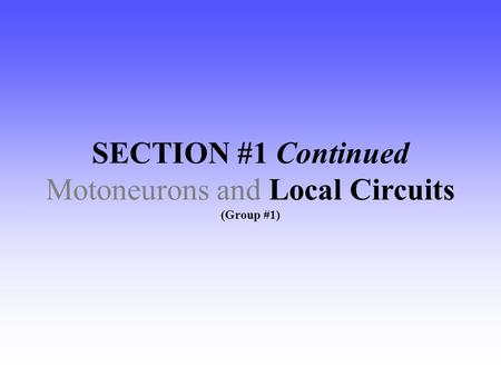 SECTION #1 Continued Motoneurons and Local Circuits (Group #1)