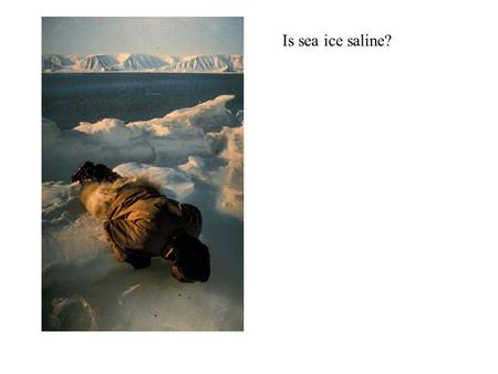 Is sea ice saline?.