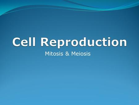 Cell Reproduction Mitosis & Meiosis.