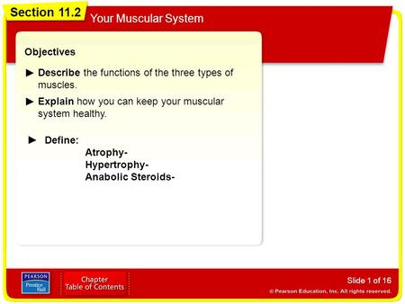 Section 11.2 Your Muscular System Slide 1 of 16 Objectives Describe the functions of the three types of muscles. Explain how you can keep your muscular.