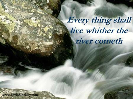 Every thing shall live whither the river cometh www.kevinhinckley.com.
