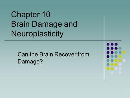Can the Brain Recover from Damage? Chapter 10 Brain Damage and Neuroplasticity 1.