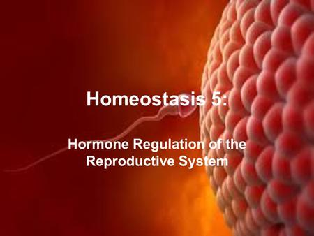 Hormone Regulation of the Reproductive System