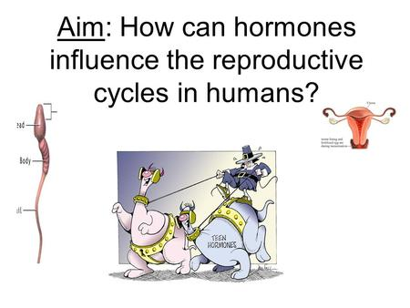 Aim: How can hormones influence the reproductive cycles in humans?