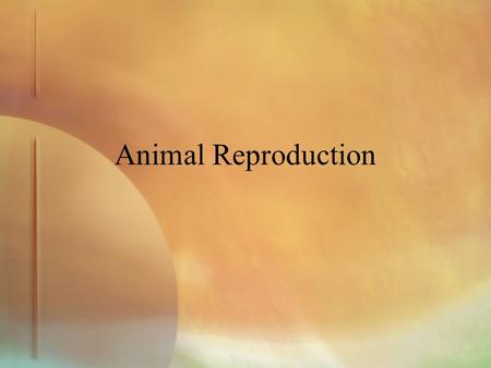 Animal Reproduction.