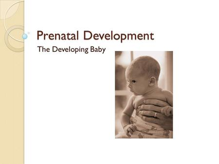 Prenatal Development The Developing Baby. Conception The process of the sperm fertilizing the ovum. ◦ Sperm- male cell ◦ Ovum- women egg cell.