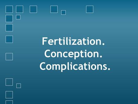 Fertilization. Conception. Complications.. 4 Phases of the Menstrual Cycle.