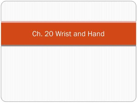 Ch. 20 Wrist and Hand. Anatomy 27 bones in the hand and wrist Nerves Medial Ulnar Radial Flexor and extensor tendon for each finger.