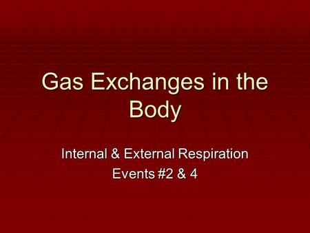 Gas Exchanges in the Body Internal & External Respiration Events #2 & 4.